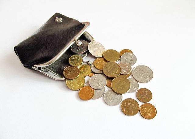 malá peněženka.jpg