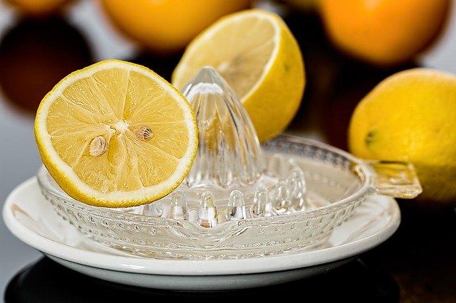 lis na citrony.jpg
