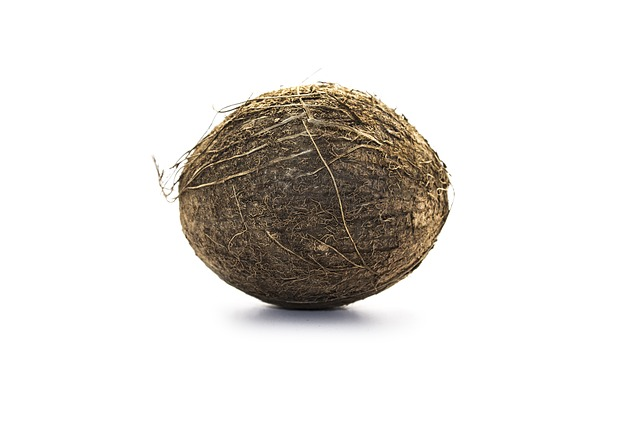 kokos v celku